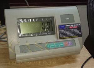 Indicator-XK3190-A12