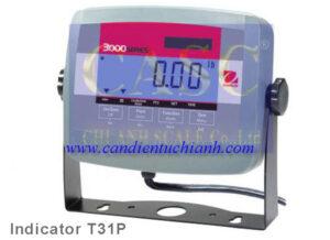 Indicator T31P Ohaus