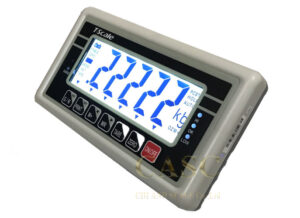 Đầu cân điện tử BW T-Scale