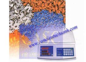 Cân đếm điện tử TCII